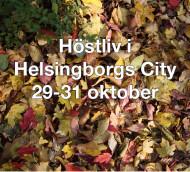 Höstliv på Kullagatan och i Helsingborg City 29-31 oktober